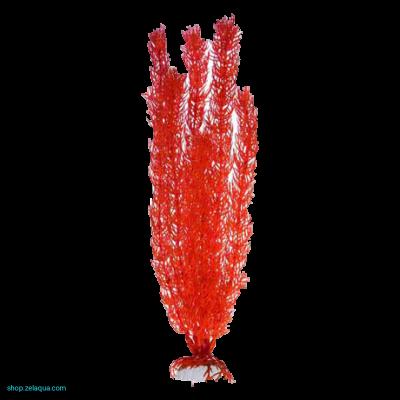 Роголистник кораловый