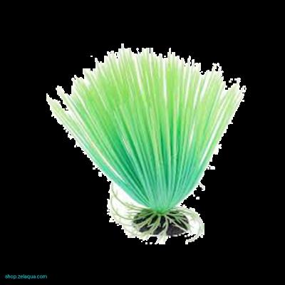 Растение светящееся в темноте №2
