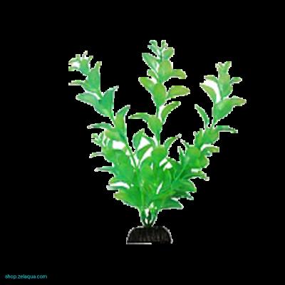 Растение светящееся в темноте №3