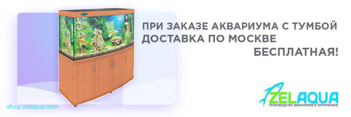 Доставка аквариума